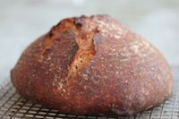 No Knead Rye Bread