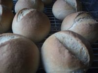 Rye Rolls