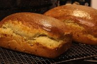 Cheesy Sourdough Brioche