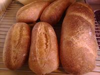 Whole Wheat Italian Bread (Sourdough)