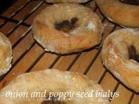 Onion And Poppy Seed Bialys