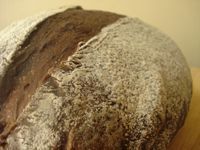 Cocoa Chocolate Coffee Sourdough Bread