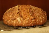 Whole Wheat & Toasted Walnut Sourdough