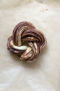 Chocolate Yeast Cake & Roulade
