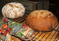Ken Forkish's Harvest Bread