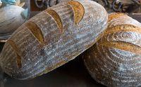 Durum-Kamut Italian Bread