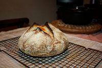 Pane No-knead Con Lievito Naturale