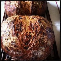 Cheese & Caramelised Onion Bread With A Poolish