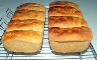 Whole Wheat Maize Bread