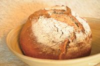 Artisanal Wheat Sourdough Herbal Oregano Bread