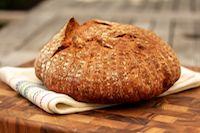 75% Whole Wheat Saturday Bread