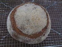 Sourdough Bulgur Loaf