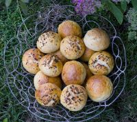 Buttermilk Sour Cream Oat Tangzhong Rolls