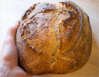 Tartine-style Sourdough Bread With Wheat Germ