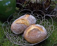 Durum Semolina Sourdough