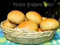 Potato Oregano Rolls