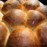 Buttery Whole Wheat Dinner Rolls