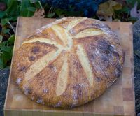 100% Durum Semolina Bread