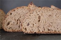 Ninety-five Percent Whole Grain Sourdough