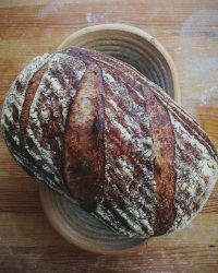Sprouted Amaranth Bread