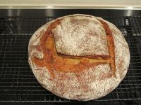 Sourdough Kamut With Hazelnuts And Rosemary
