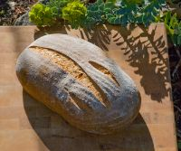 German Style WEIZENBR?ñTCHEN Bread