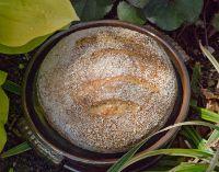Oat Porridge Bread From Tartine 3