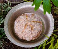 Ian's Oat Porridge Bread