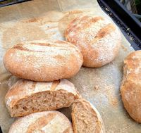 Moroccan Whole Wheat Bread: Khoz Zra'a