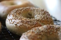 NY Style Bagels With Wild Sourdough