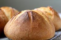 Panmarino - Italian Rosemary Bread