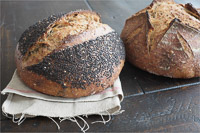 Seeded Whole Wheat Sourdough