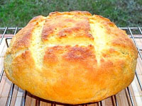 Broa - The Portuguese Bread