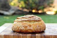 Sourdough Polenta Bread