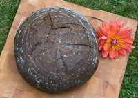 Pumpernickel Bread-Yeast Version