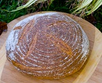 Red Lentil Sourdough Bread