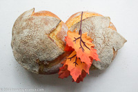 Pane Foglia Leaf Bread