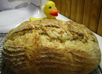 Smoked Provolone & Sage Polenta Bread