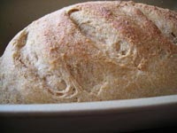 Whole Wheat Artisan Bread in 5 - Soaked