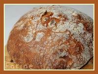 Jim Lahey's No-Knead Peanut Bread