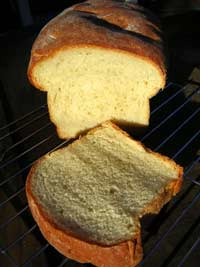 Dilly Ricotta Bread