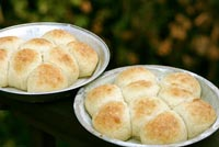 Perfect-ly Fast Dinner Rolls