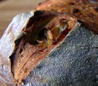 Roasted potato sourdough