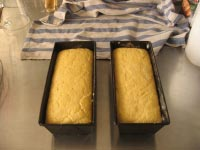 Batter Corn Bread