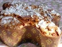 quick colomba