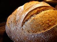 Whole Wheat Sourdough Oat Loaf
