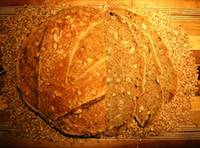 Sprouted Sunny Wheat Bread