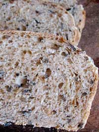 Wild Rice and Carmelized Onion Bread