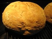 Dan Lepard's Barm Bread
