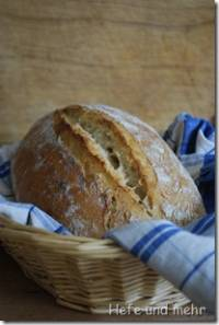JTs Rustic bread with 3 different preferments